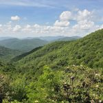 3 days in Chattahoochee National Forest and Savannah